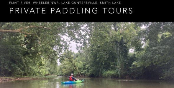 Paddling Tours & Lessons